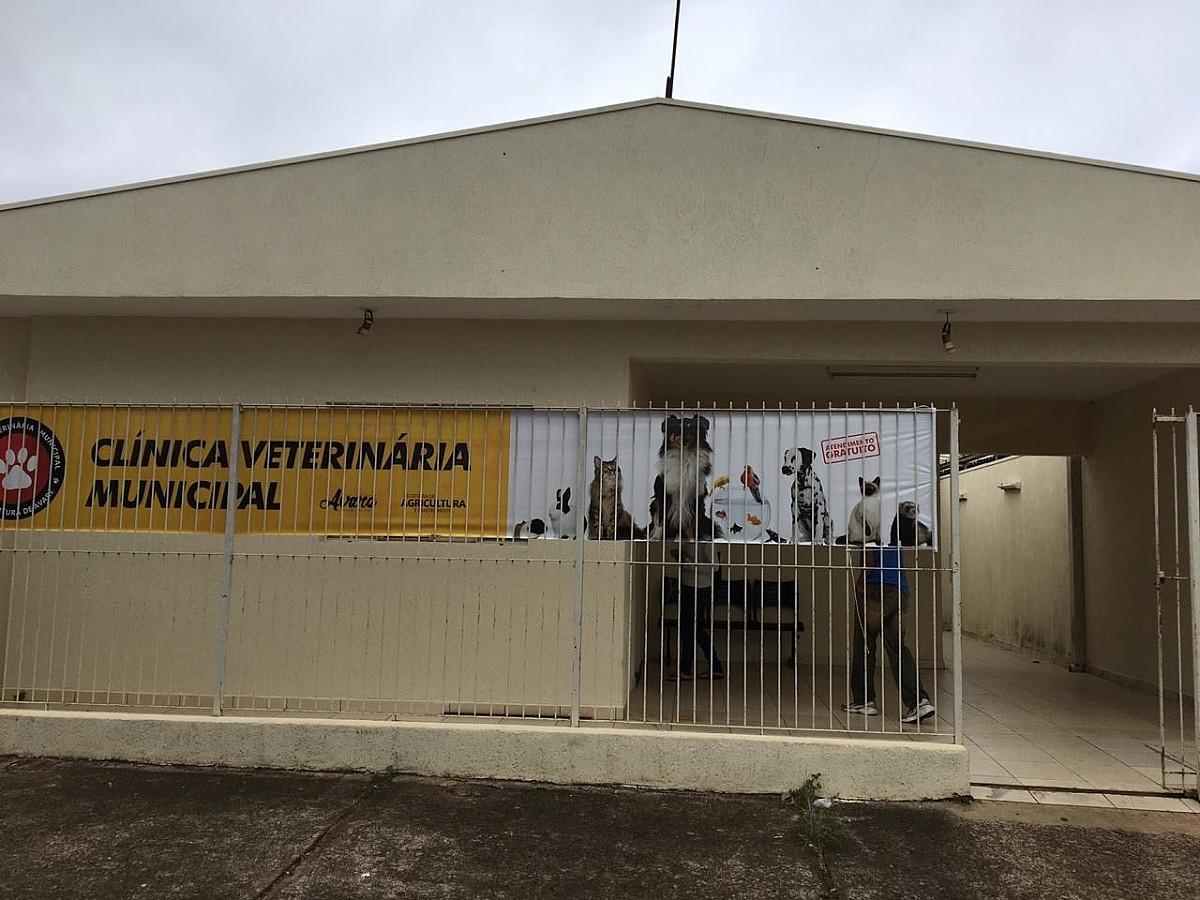 https://www.jornalacomarca.com.br/wp-content/uploads/2020/06/CLÍNICA-VETERINÁRIA-AVARÉ.jpg