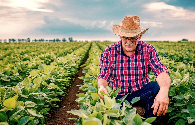 https://www.jornalacomarca.com.br/wp-content/uploads/2020/08/agricultura_1576168517.jpg